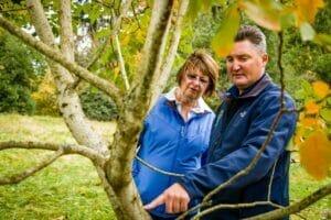 Arborist Jeff Moore inspects tree