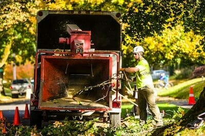 Certified arborist running wood through a wood chipper in Portland OR