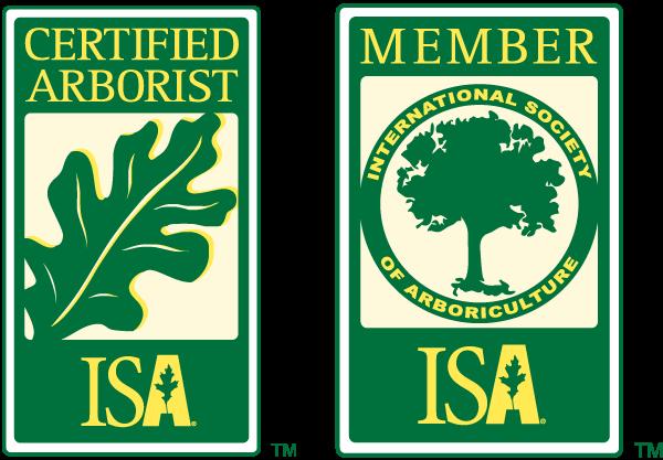 ISA Member and Certified Arborist